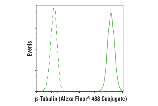 Flow cytometric analysis of Jurkat cells using β-Tubulin (9F3) Rabbit mAb (Alexa Fluor® 488 Conjugate) (solid line) compared to concentration-matched Rabbit (DA1E) mAb IgG XP® Isotype Control (Alexa Fluor® 488 Conjugate) #2975 (dashed line).
