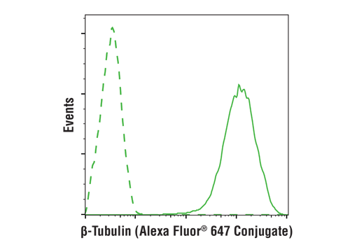 Flow cytometric analysis of Hela cells using β-Tubulin (9F3) Rabbit mAb (Alexa Fluor® 647 Conjugate) (solid line) or concentration-matched Rabbit (DA1E) mAb IgG XP<sup>®</sup> Isotype Control (Alexa Fluor<sup>®</sup> 647 Conjugate) #2985 (dashed line).