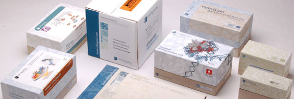 Marketing and Packaging Materials
