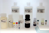 Western Blotting Solutions Kit