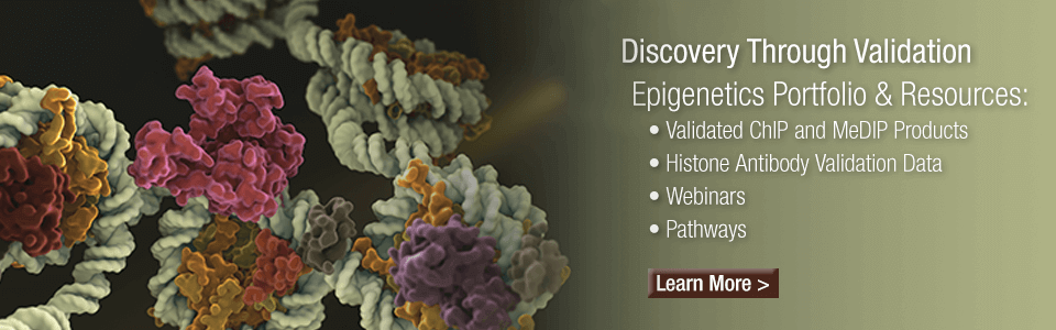 Epigenetics Resource™ Webinar