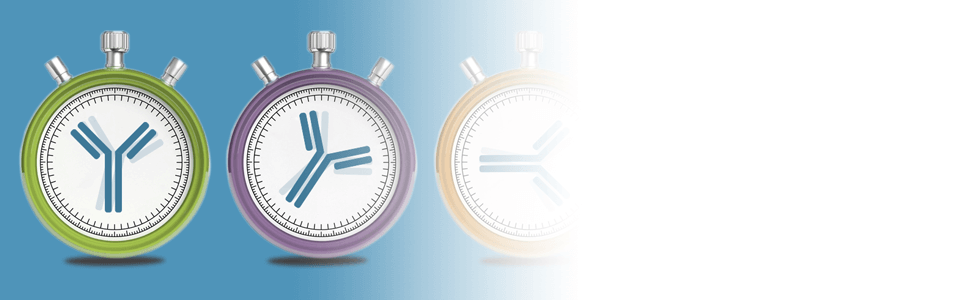 Time Ticking on IHC Antibody Selection