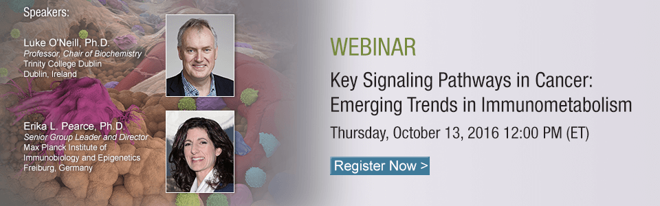 Webinar: Cancer Immunometabolism
