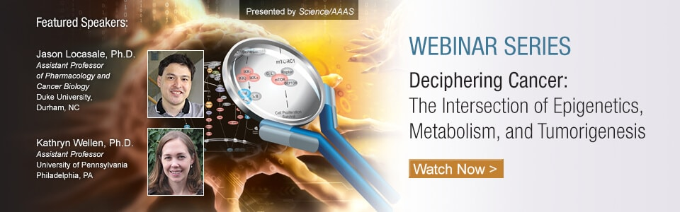 Webinar Series Deciphering Cancer: The Intersection of Epigenetics, Metabolism, and Tumorigenesis