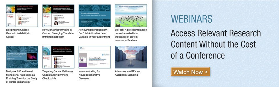Cell Signaling Technology Videos and Webinars