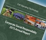 CSR 2015 Annual Report