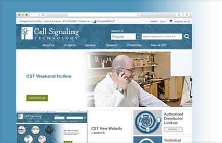 CST 推出全新网站!