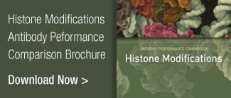 Histone Modifications Comparison Brochure