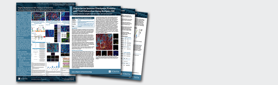 Examine Immune Checkpoints with Fluorescent Multiplex IHC Research Poster and Application Notes