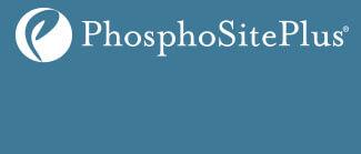 Logo PhosphoSitePlus