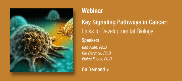 Key Signaling Pathawys in Cancer