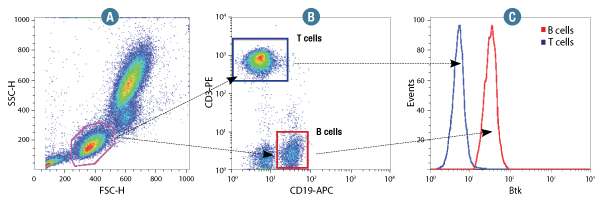 Btk is selectively expressed in B cells.