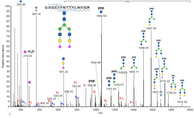 MS/MS spectrum of a glycopeptide identified using PTMScan Glycosylation profiling