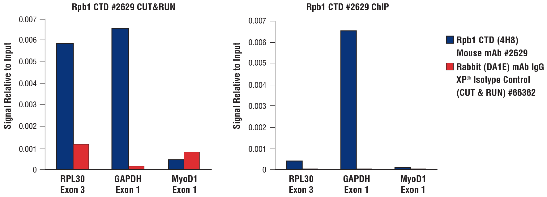 Rpb1 CTD qPCR results for CUT&RUN and ChIP