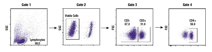 Gating strategy to identify live cells and specific immune cell subpopulations
