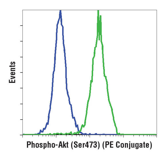 Flow cytometric analysis of phosphorylation states of Jurkat cells