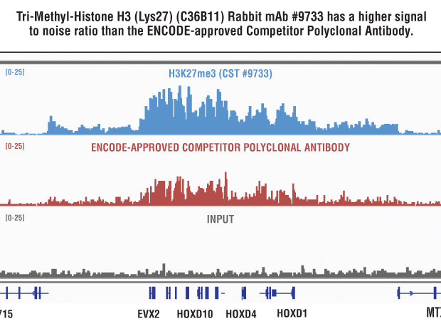 Side-by-side comparison of Tri-Methyl-Histone H3 (Lys27) (C36B11) Rabbit mAb #9733 and Competitor Polyclonal Antibody.