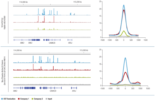 SimpleChIP<sup>&reg;</sup> Plus Sonication Chromatin IP Kit matches competitors' kits performance for transcription factors and cofactors