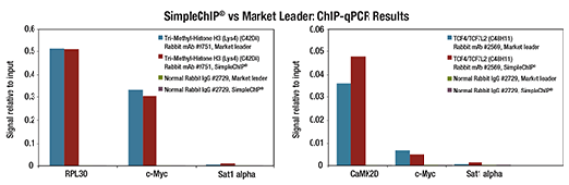 ChIP Workflow using ChIP qPCR